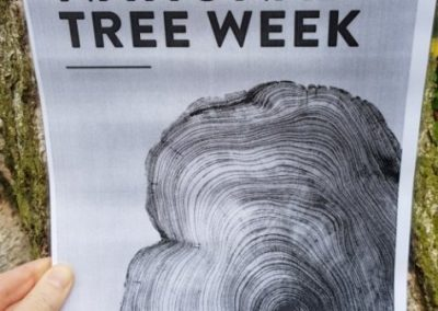 For National Tree Week 2018, Jane initiated a 'TPO push' to get more of Alsager's trees protected