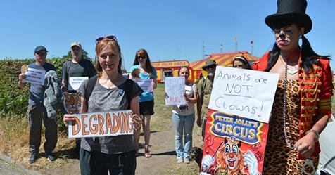 Jane Smith with demonstrators against the animal circus, Alsager, June 2018