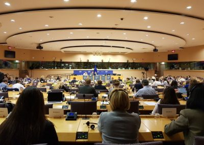 Jane attended the European Parliament's AGRI Committee debate on live exports in 2018
