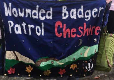 Jane representing Wounded Badger Patrol Cheshire on the People's Walk for Wildlife, London,